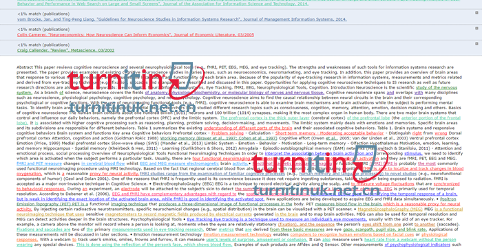 Turnitin QuickView报告2