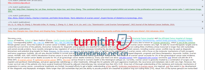 Turnitin UK QuickView报告2